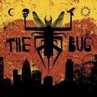 _the-bug.jpg
