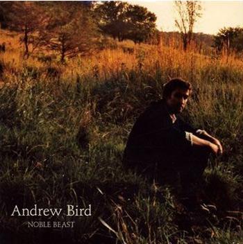 andrew-bird.jpg