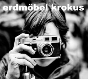 krokus_379x340