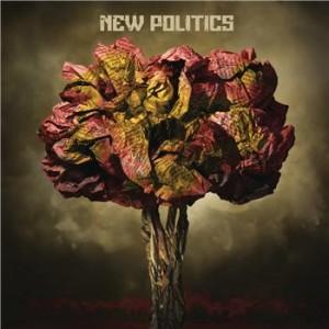 new_politics_3