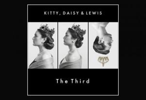 kitty-daisy