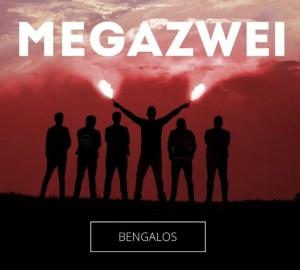 megazwei1