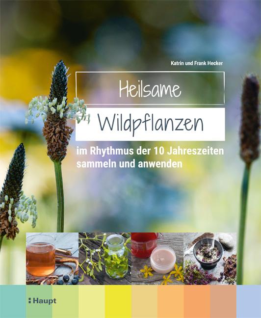 zuckerkick werktag 30 heilsame wildpflanzen